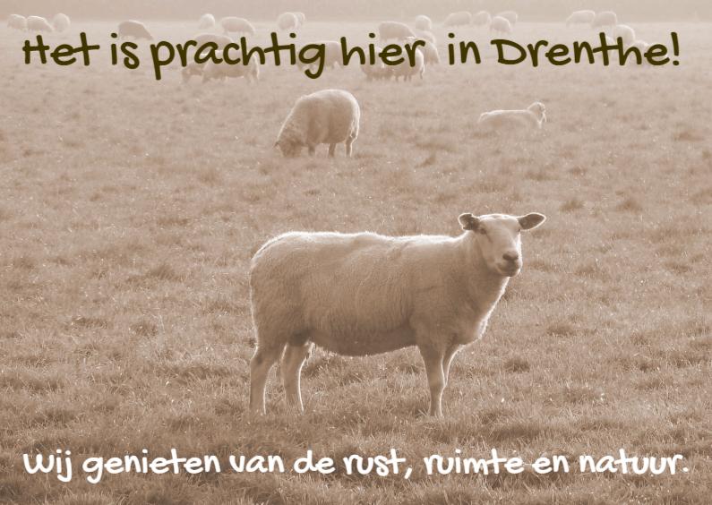 Vakantiekaarten - Vakantiekaart mooi Drenthe IW