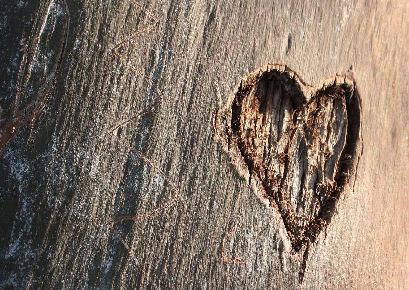 Valentijnskaarten - Hart boom