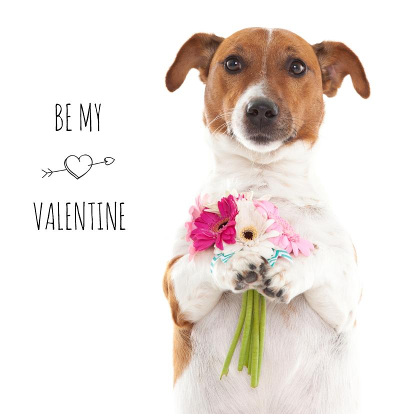 Valentijnskaarten - Liefde - Be my valentine - Boris