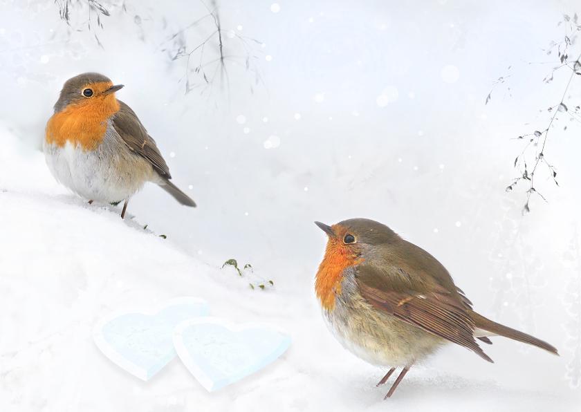 Valentijnskaarten - Valentijn in de sneeuw