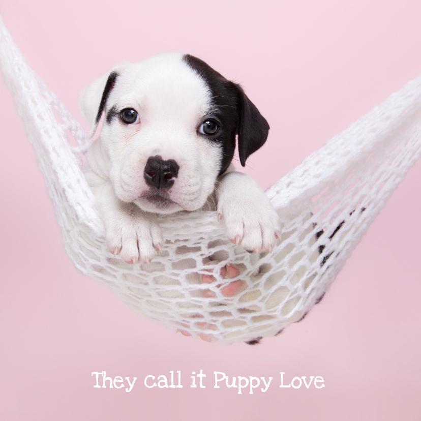 Valentijnskaarten - Valentijn - Puppy Love - Hond hangmat roze