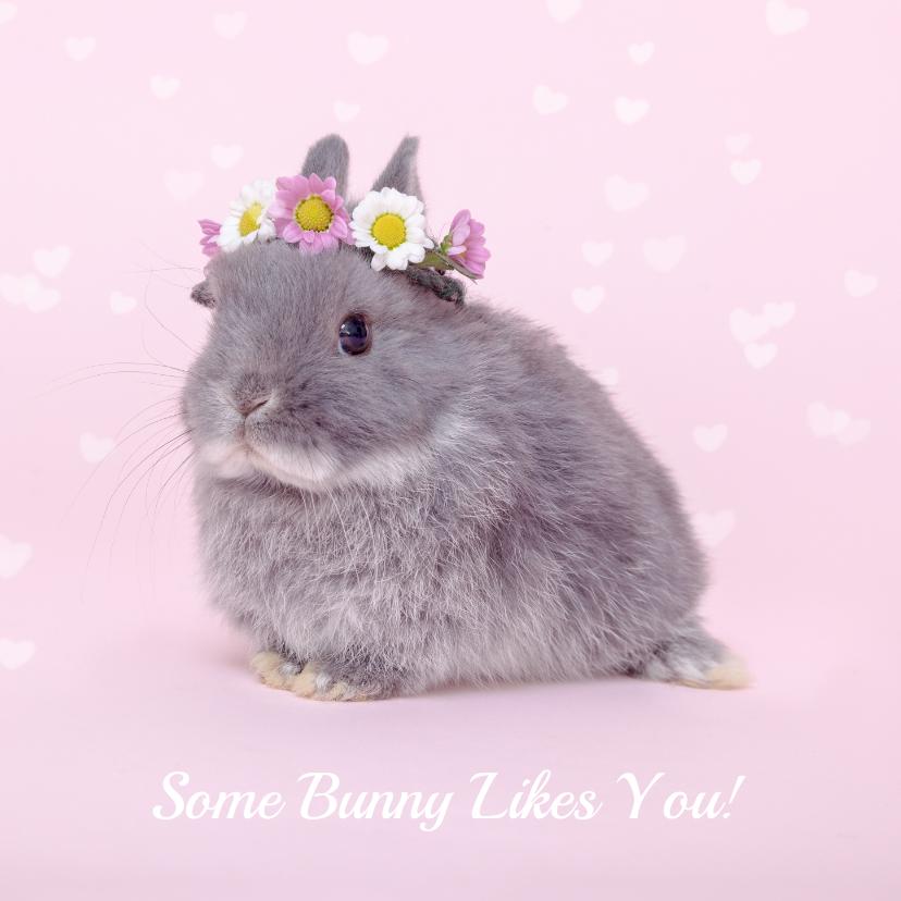 Valentijnskaarten - Valentijn - Some Bunny Likes You