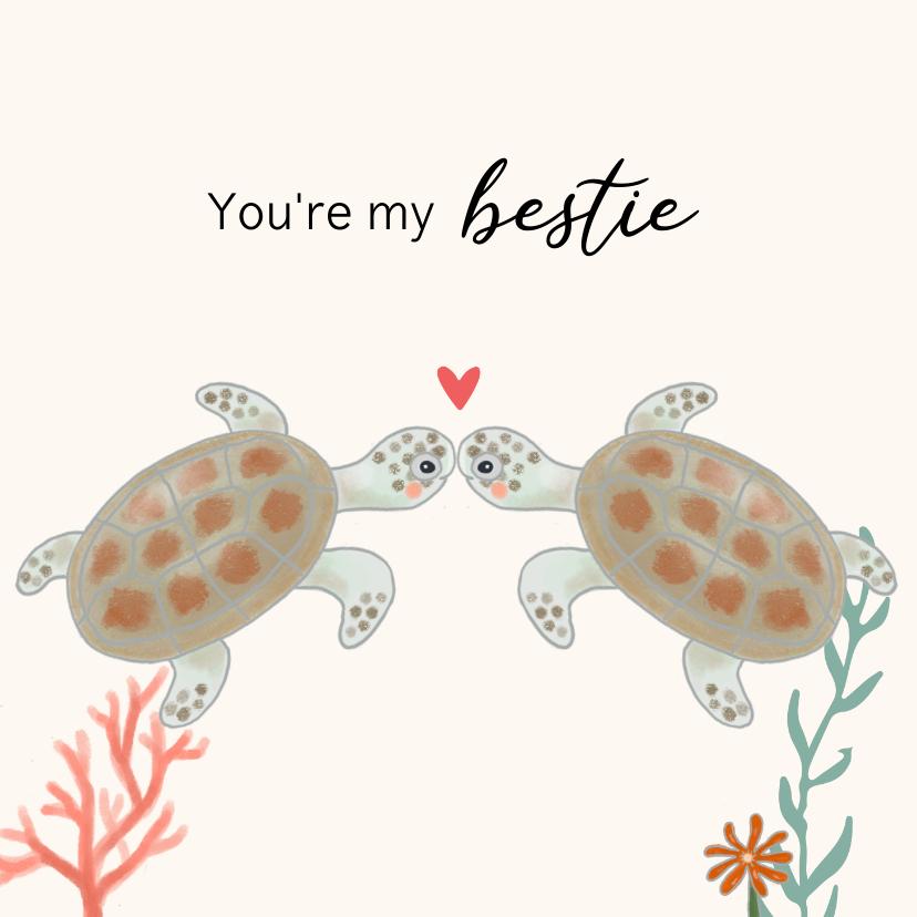 Valentijnskaarten - Valentijnskaart - Schildpadjes met hartje