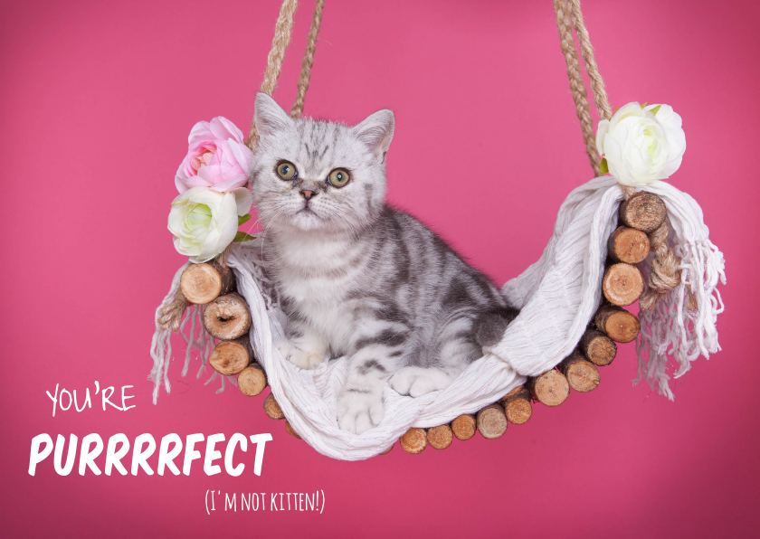 Valentijnskaarten - Valentijnskaart - You're purrrfect - Kitten roze