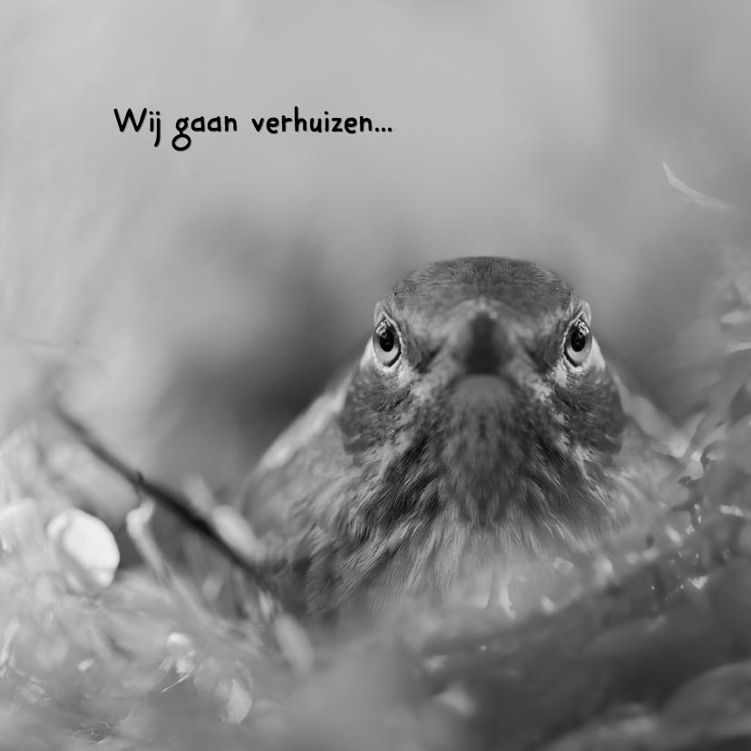 Verhuiskaarten - Verhuisbericht met nestje