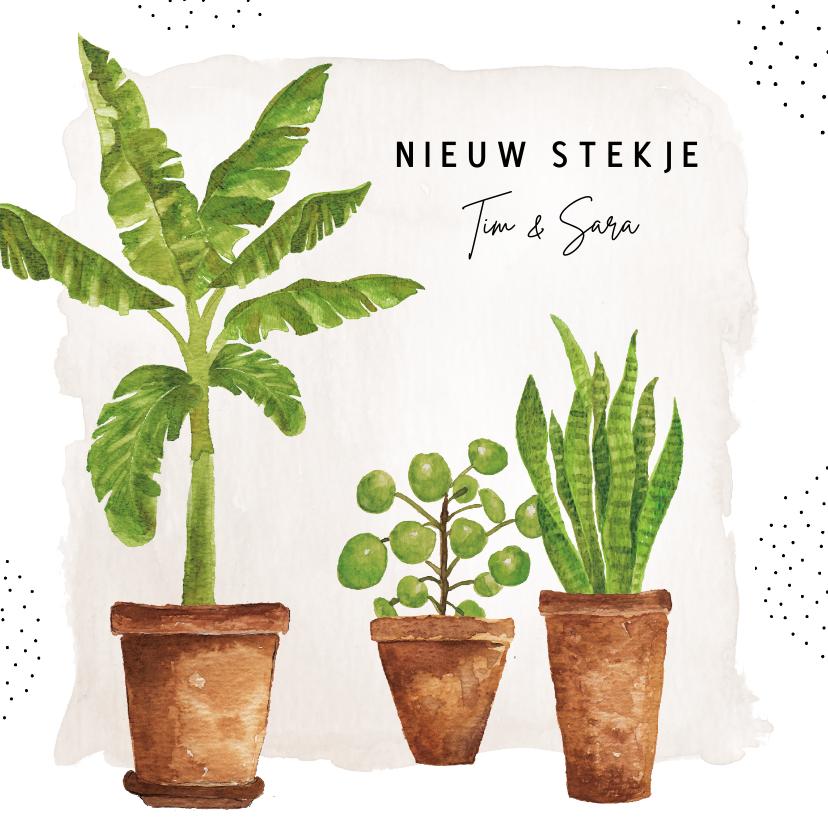 Verhuiskaarten - Verhuiskaart met aquarel kamerplanten