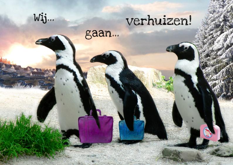 Verhuiskaarten - Verhuizende pinguins
