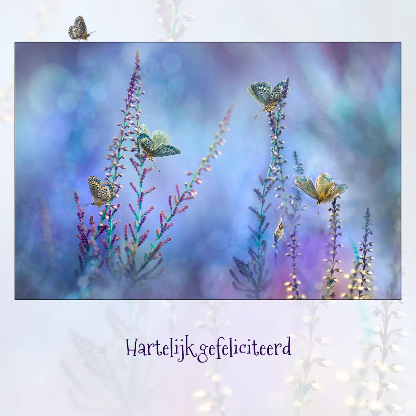 Verjaardagskaarten - Blauwe vlinder-fantasie