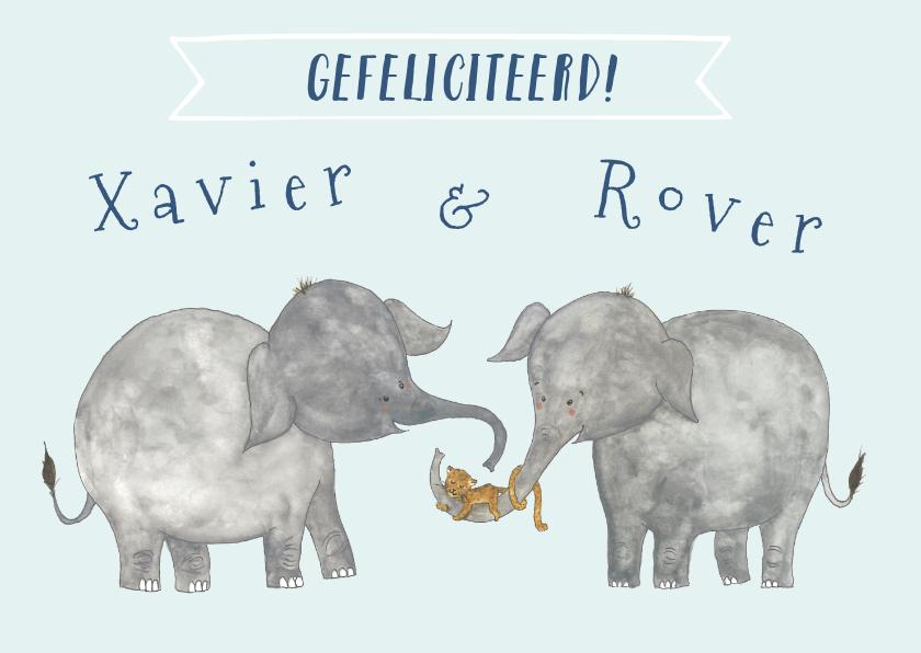 Verjaardagskaarten - Felicitatie tweeling olifanten
