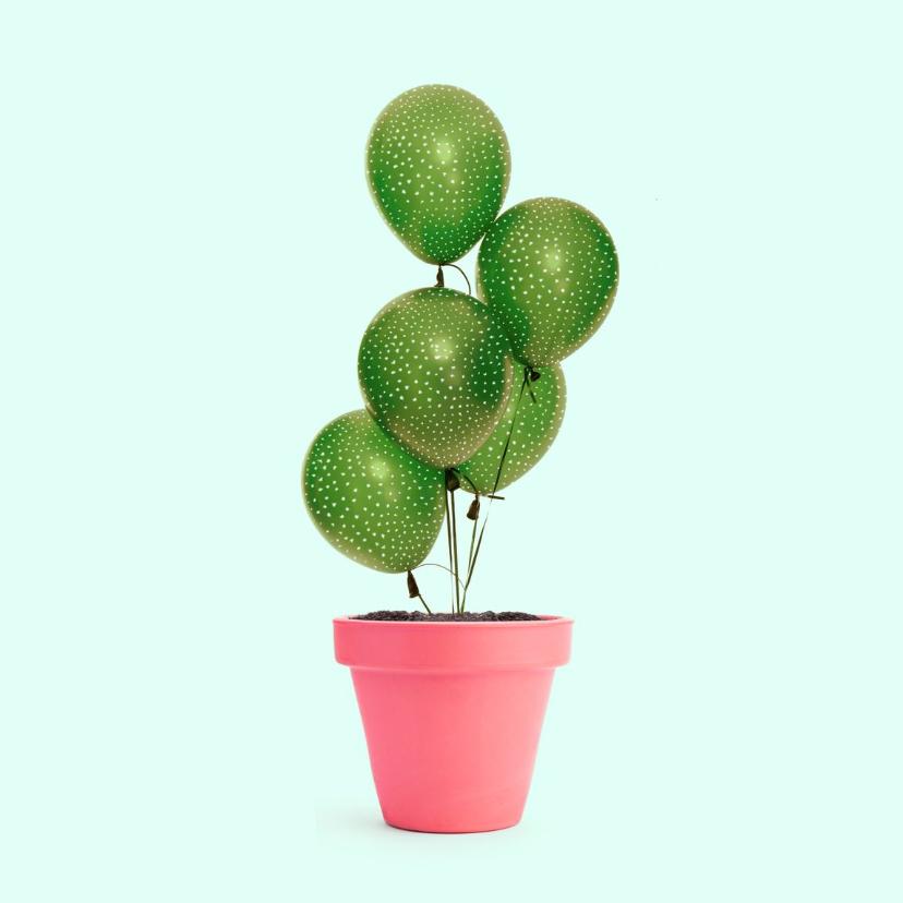 Verjaardagskaarten - Felicitatiekaart 'cactus balloon'