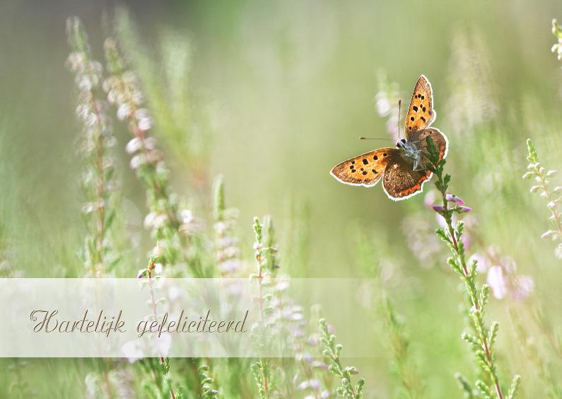 Verjaardagskaarten - Feliciteren met vlinder