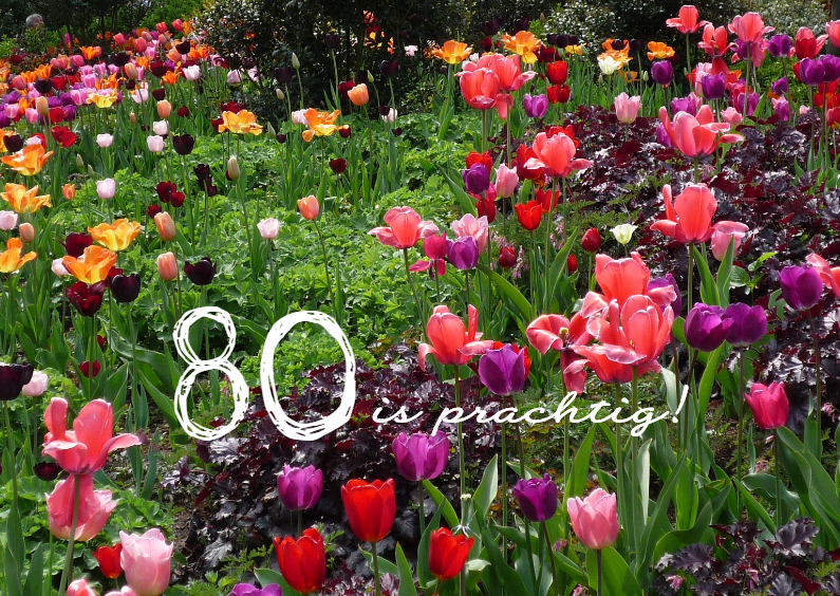 Verjaardagskaarten - Fleurige tulpenmix
