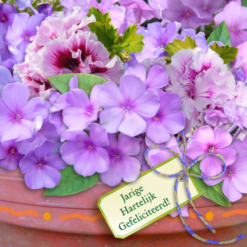 Verjaardagskaarten - Floxen in pot lila met Felicitatie
