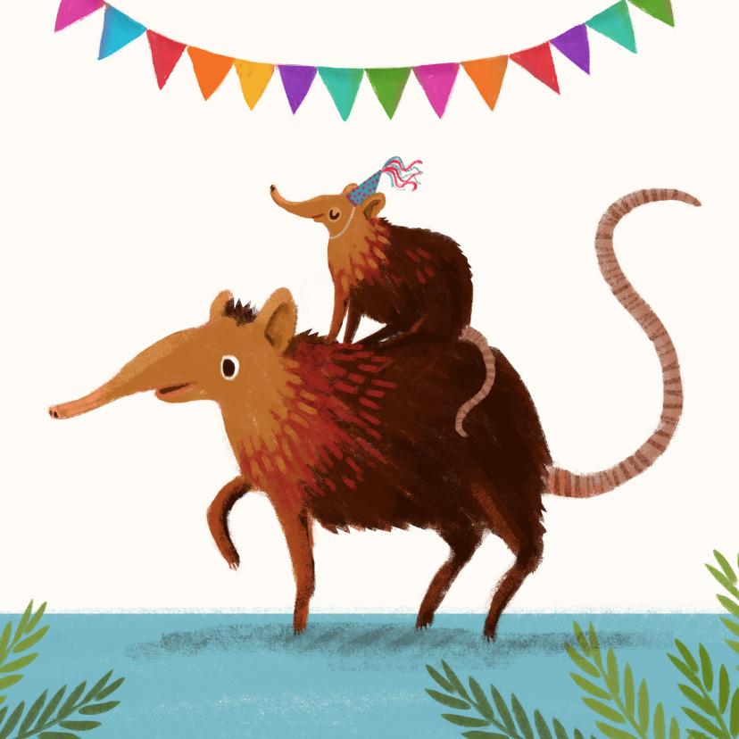 Verjaardagskaarten - Gefeliciteerd feestbeest!
