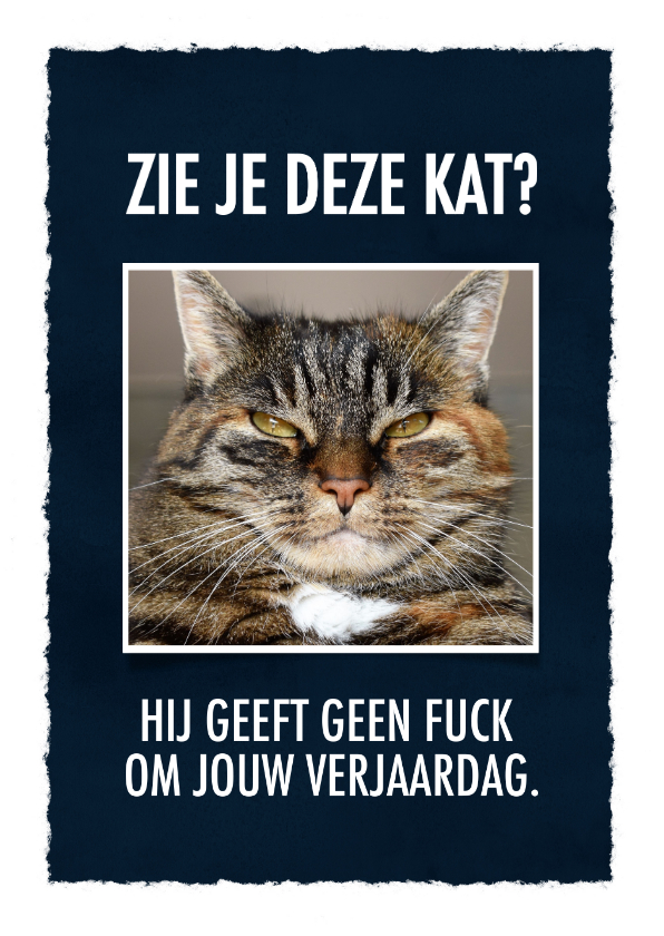 Verjaardagskaarten - Grappige verjaardagskaart met leuke tekst & foto van een kat
