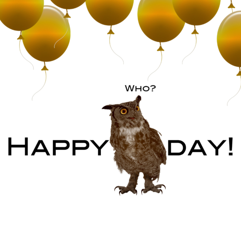 Verjaardagskaarten - Happy bird day to you