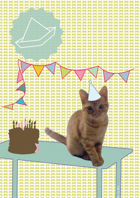 Verjaardagskaarten - happy birthday cat