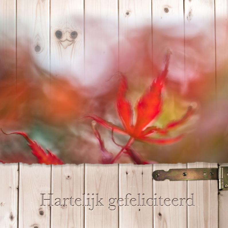 Verjaardagskaarten - Herfstkleuren op hout