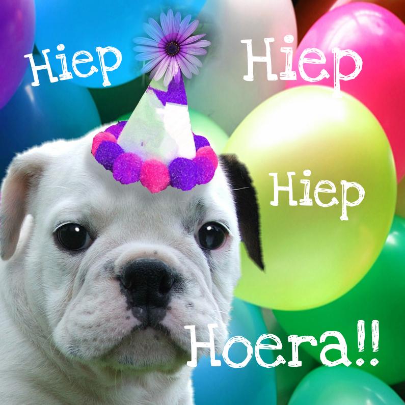 Verjaardagskaarten - Hond verjaardag