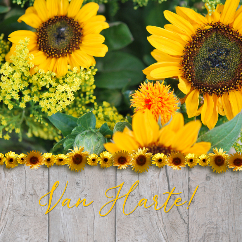 Verjaardagskaarten - Hout zonnebloemen