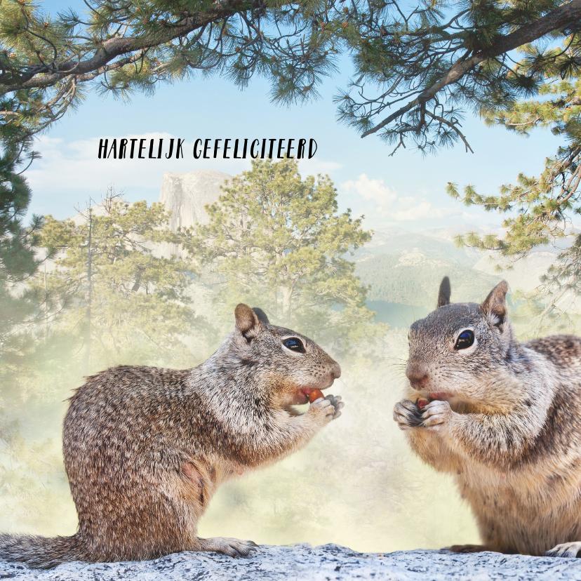 Verjaardagskaarten - Jarig met eekhoorntjes
