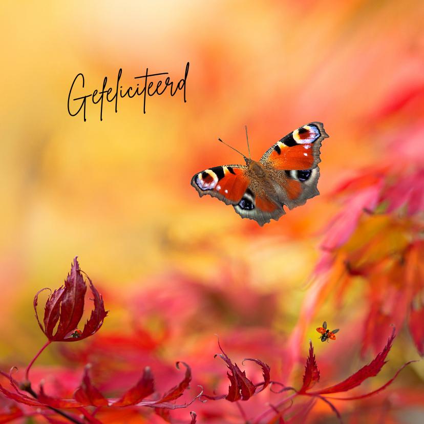 Verjaardagskaarten - Jarig met warme herfstkleuren