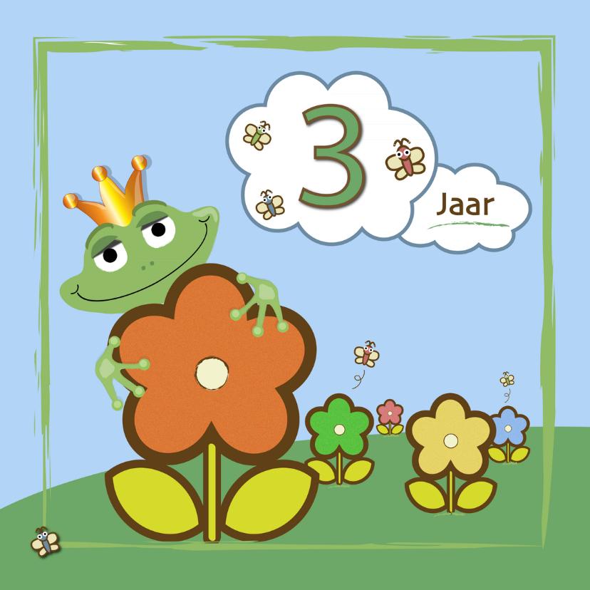 Verjaardagskaarten - kikker - bloemen en vlinders 3 jaar