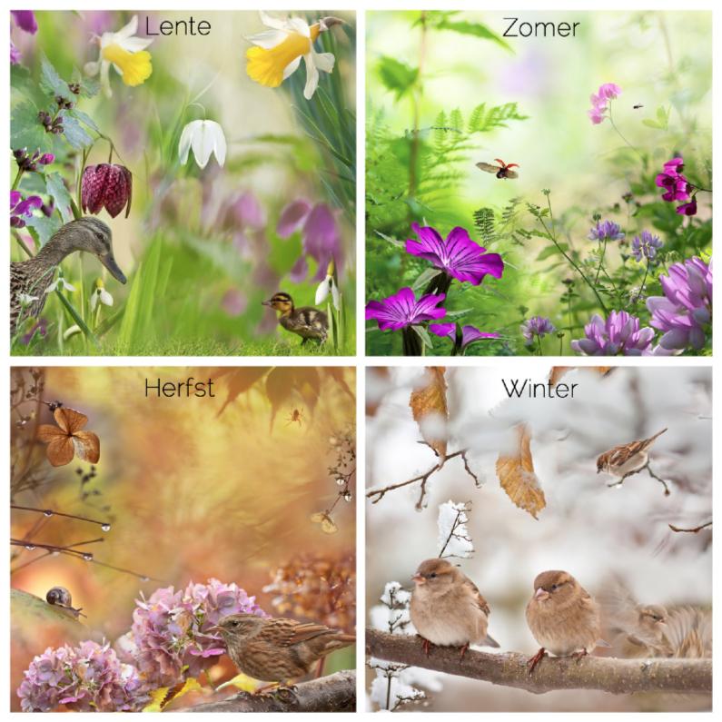 Verjaardagskaarten - Lente-zomer-herfst-winter