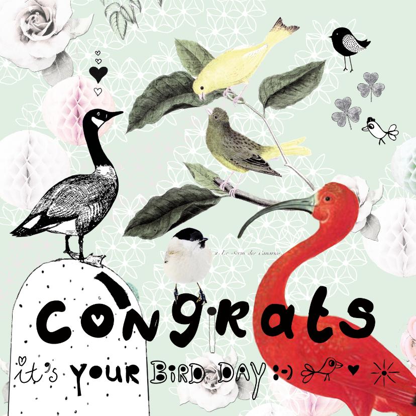 Verjaardagskaarten - Leuke verjaardagskaart 'It's your birdday!' Met vogels