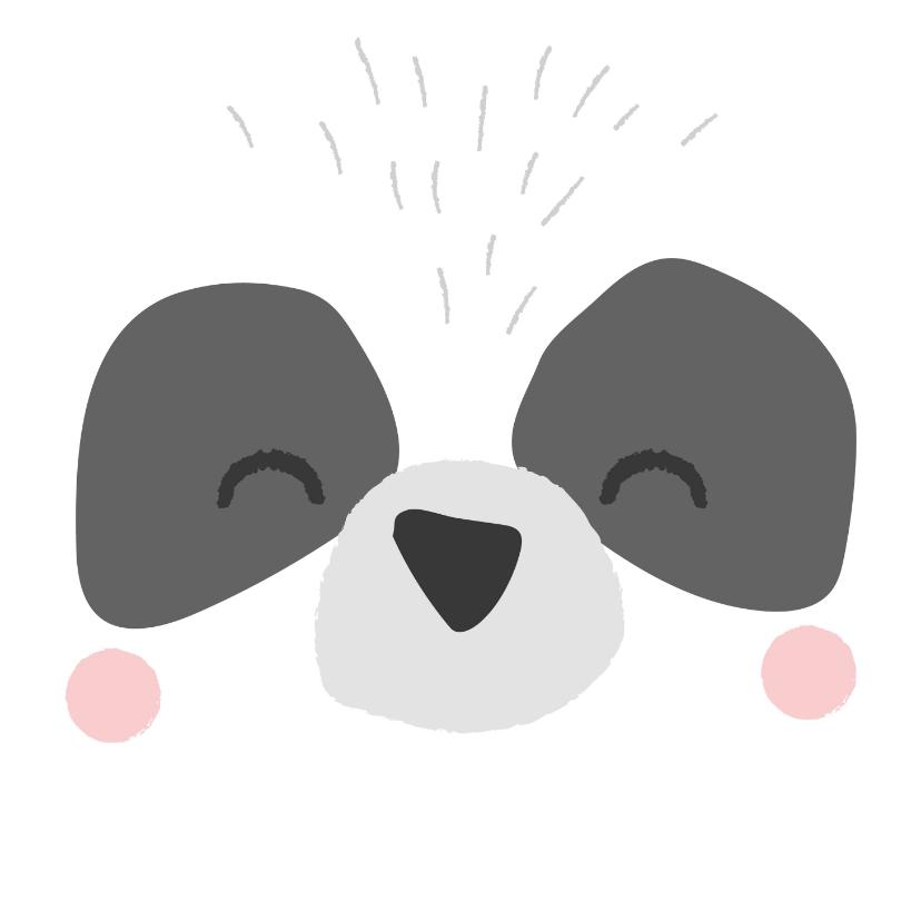 Verjaardagskaarten - Lieve verjaardagskaart met het gezicht van een panda