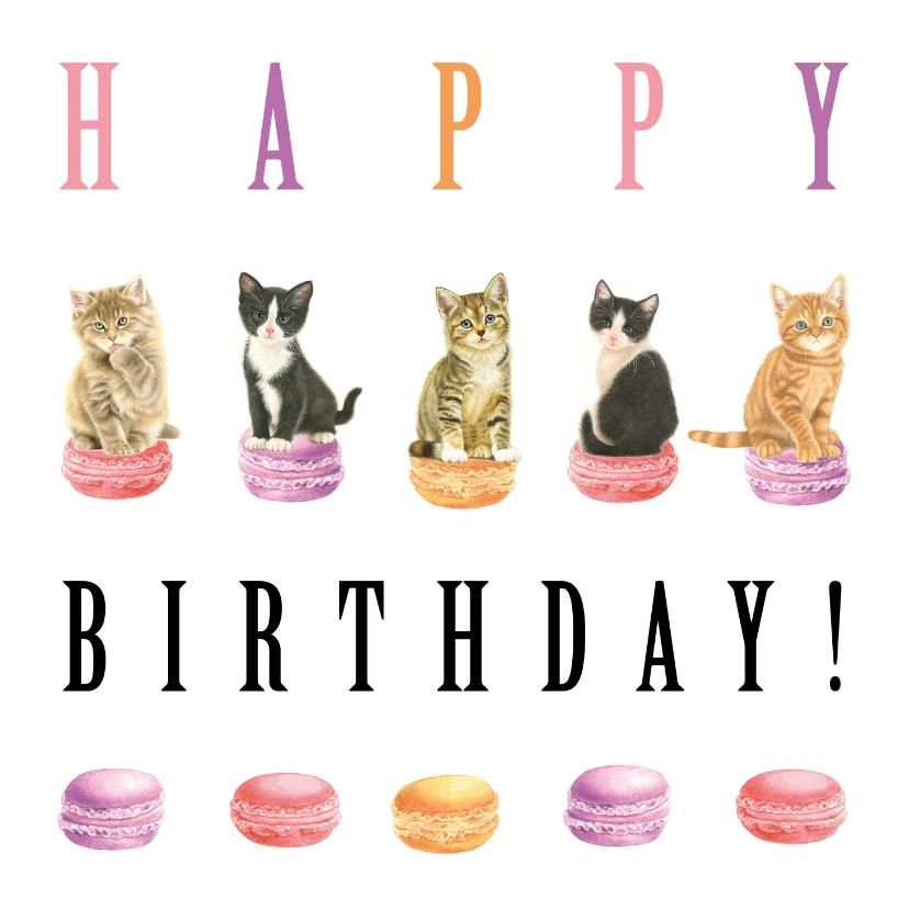 Verjaardagskaarten - Poesjes en Macarons Happy Birthday