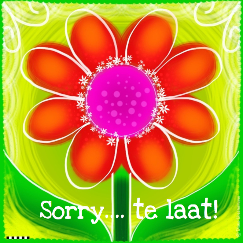 Verjaardagskaarten - Sorry te laat bloem
