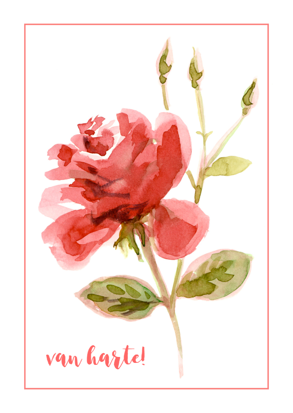 Verjaardagskaarten - Sterktekaart met rode roos