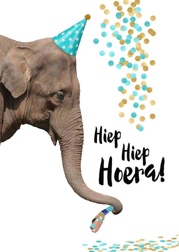 Uitzonderlijk Verjaardag grappige olifant met toetertje en feesthoedje  @EU-86