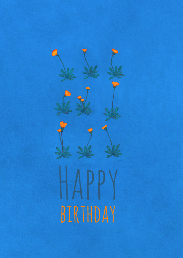 Verjaardagskaarten - verjaardag-happybirthday2-KK