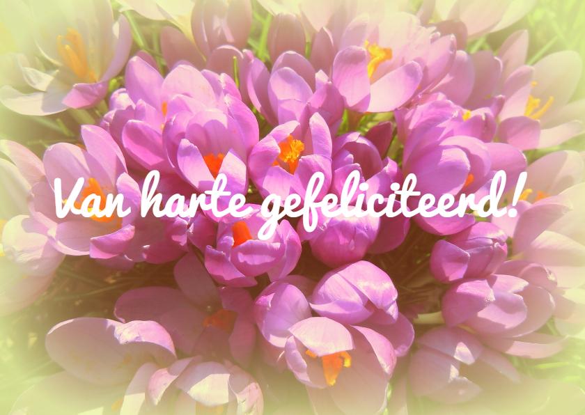 Verjaardagskaarten - Verjaardag lentebloemen IW