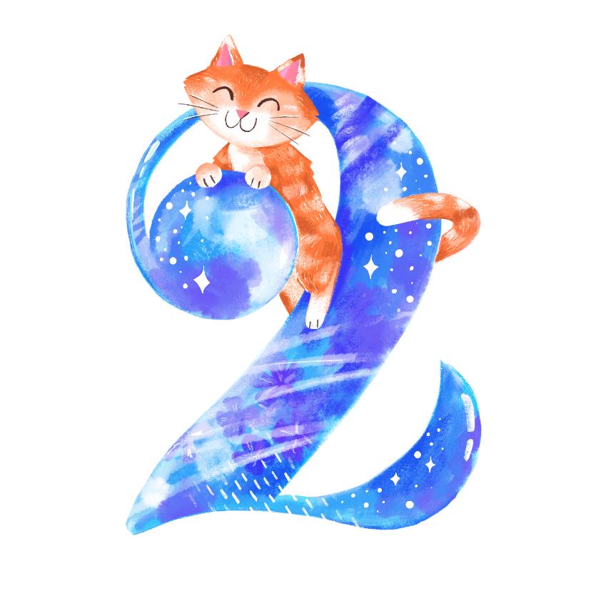Verjaardagskaarten - Verjaardagskaart 2 jaar kat