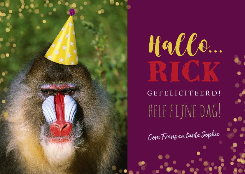 Verjaardagskaarten - Verjaardagskaart baviaan met feesthoedje