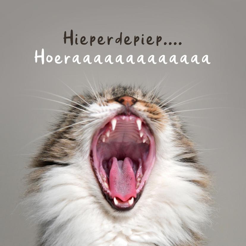 Verjaardagskaarten - Verjaardagskaart grappig hoera kat poes humor