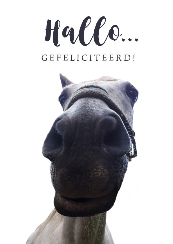 Verjaardagskaarten - Verjaardagskaart grappig paard