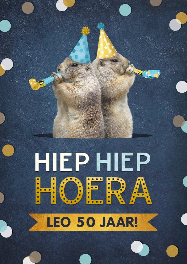 Verjaardagskaarten - Verjaardagskaart grappige marmotten met feesthoedjes