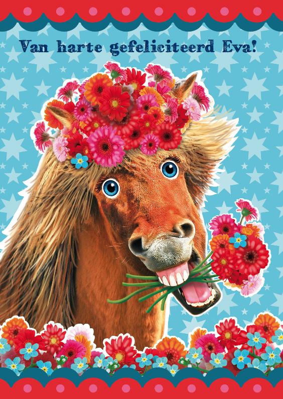 Verjaardagskaarten - verjaardagskaart hip paard rechthoekig