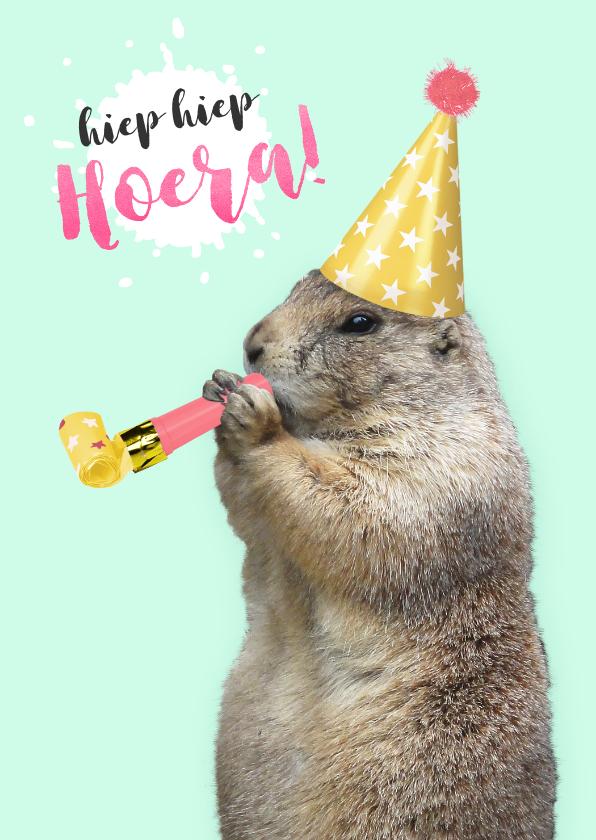 Verjaardagskaarten - Verjaardagskaart marmot met feesthoedje en toeter