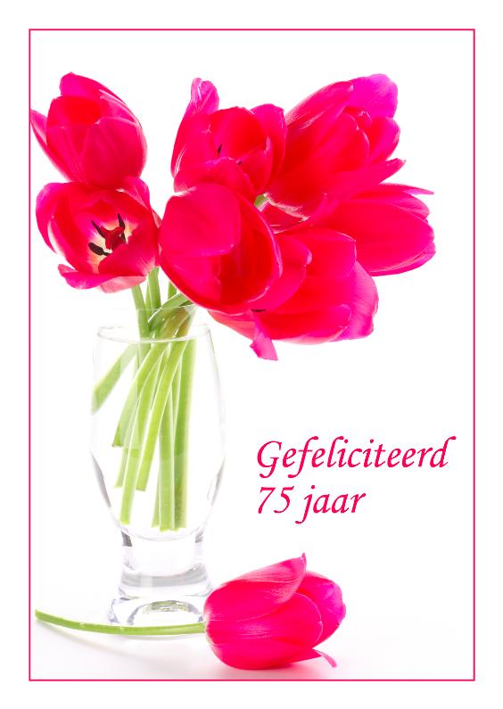 Verjaardagskaarten - Verjaardagskaart met roze tulpen 75 jaar