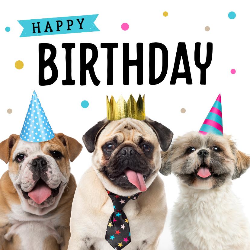 Verjaardagskaarten - Verjaardagskaart met schattige hondjes
