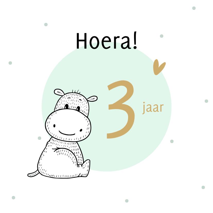 Verjaardagskaarten - Verjaardagskaart nijlpaardje met mint cirkel en confetti