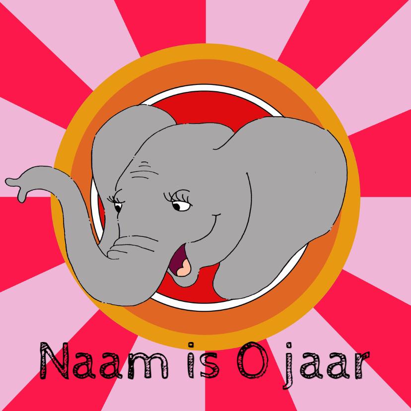 Verjaardagskaarten - Verjaardagskaart olifant vrolijk
