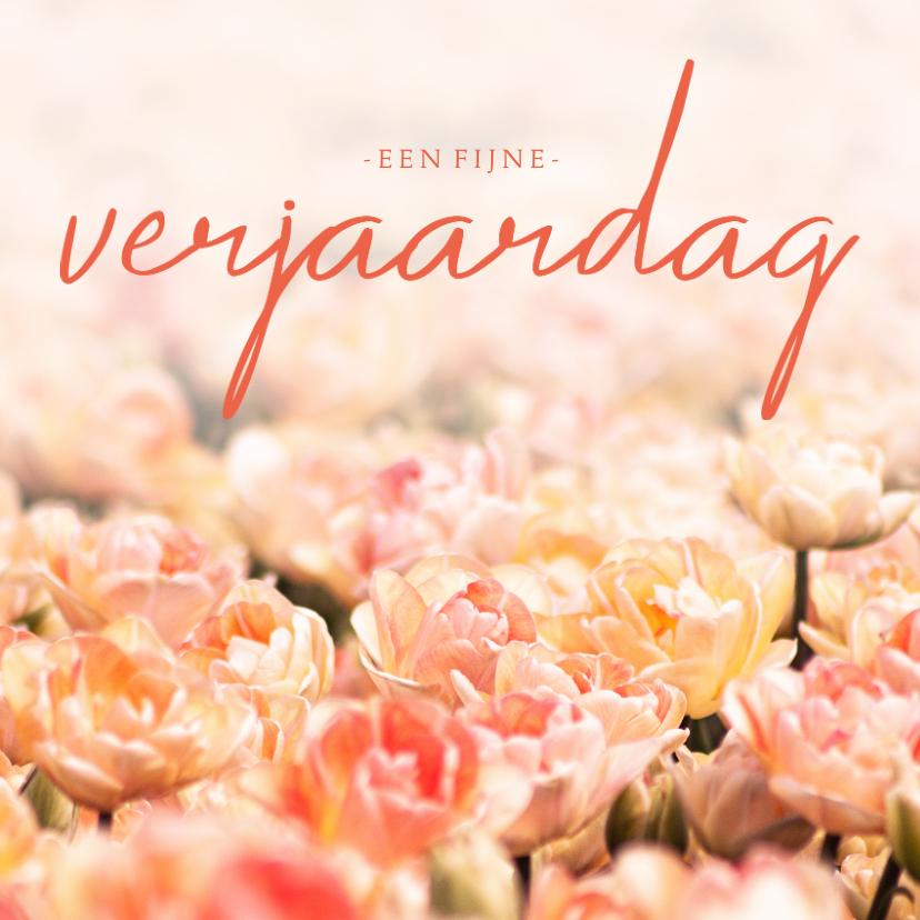 Verjaardagskaarten - Verjaardagskaart oranje tulpen fijne verjaardag