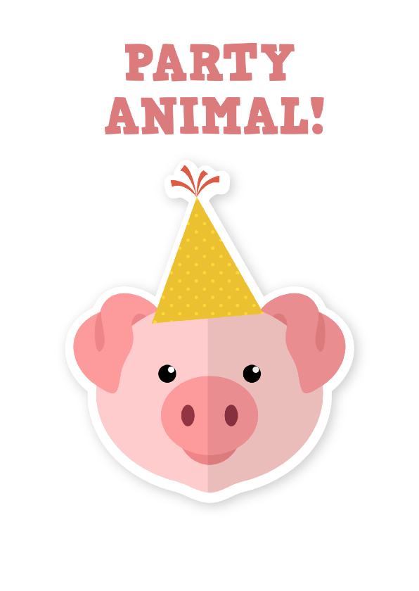 Verjaardagskaarten - Verjaardagskaart partyanimal ME