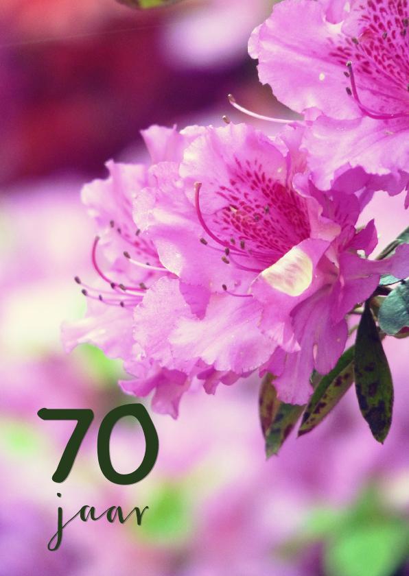 Verjaardagskaarten - Verjaardagskaart rhododendron 70